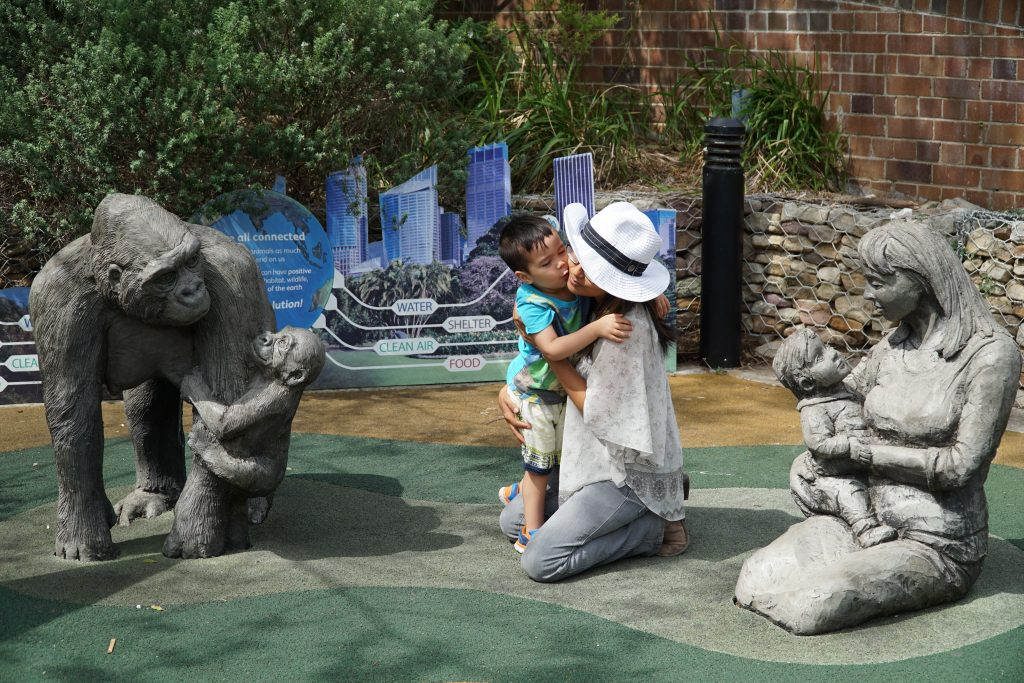 family package to zoo