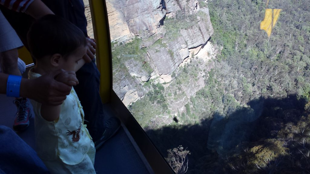 Skyway in the Blue Mountains