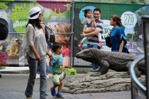 family package to taronga zoo