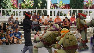 turtles sea world
