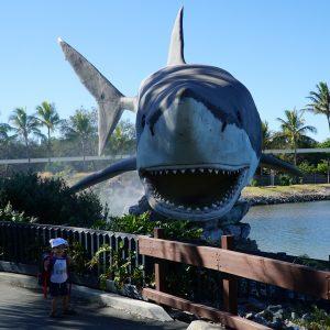 SeaWorld gold coast